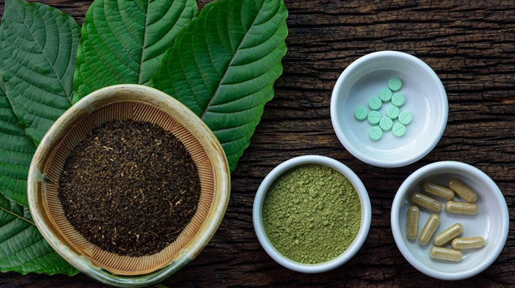 Kratom DrugFacts Can Be Particular To Produce An Effect In Your Company